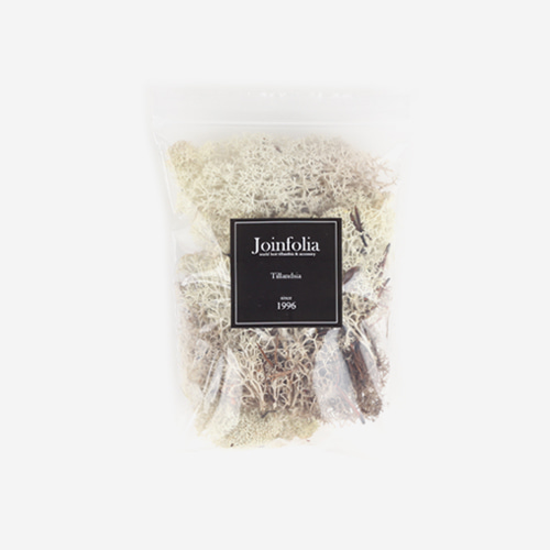Reindeer Moss Preserved(Natural)